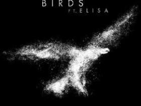 梦龙 - Birds(新歌首发).高品质音乐mp3+歌词版-百度网盘免费下载