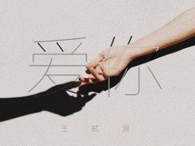 王贰浪《爱你》高品质音乐mp3-百度网盘下载-江城亦梦