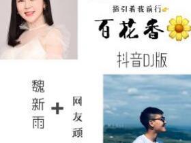 魏新雨 / 网友顽童《百花香(抖音DJ版)》高品质音乐mp3-百度网盘下载-江城亦梦