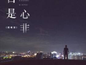 半吨兄弟《口是心非(烟嗓版)》高品质音乐mp3-百度网盘下载-江城亦梦