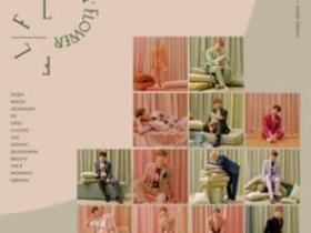 SEVENTEEN《Fallin' Flower (飘落的花瓣)》音乐EP专辑-百度网盘下载-江城亦梦