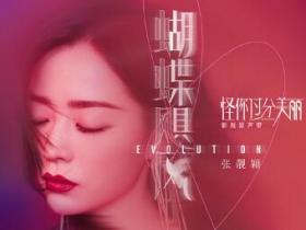 张靓颖《蝴蝶飓风》高品质音乐mp3-百度网盘下载-江城亦梦