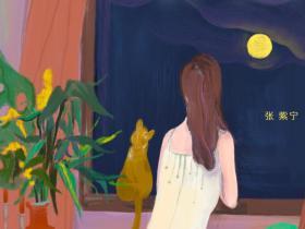 张紫宁《孤单北半球》热门翻唱单曲-高品质MP3-下载