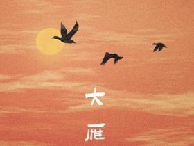 暗杠《大雁》小众音乐专题系列-下载