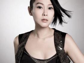刘若英《共30张音乐专辑+单曲(1995-2020)》打包合辑mp3版-百度网盘下载-江城亦梦