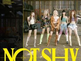 ITZY (있지)《Not Shy》音乐EP专辑-网盘下载-江城亦梦