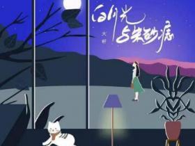 大籽《白月光与朱砂痣》小众音乐专题系列-下载