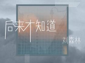 刘森林《后来才知道》小众音乐专题系列-下载