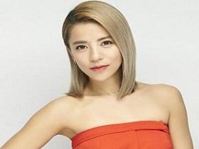 丁当《共25张音乐专辑合集(2007-2020)》-网盘下载-江城亦梦